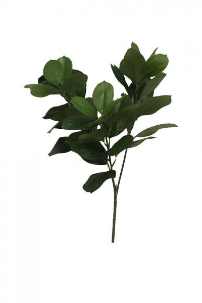 Filler & Leaves