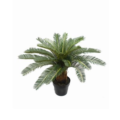 ARTIFICIAL CYCAD