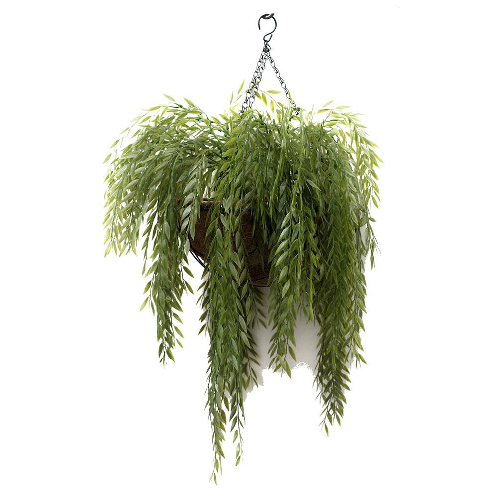 Ruccus Vine 70cm In Hanging Basket Artificial Plants Online