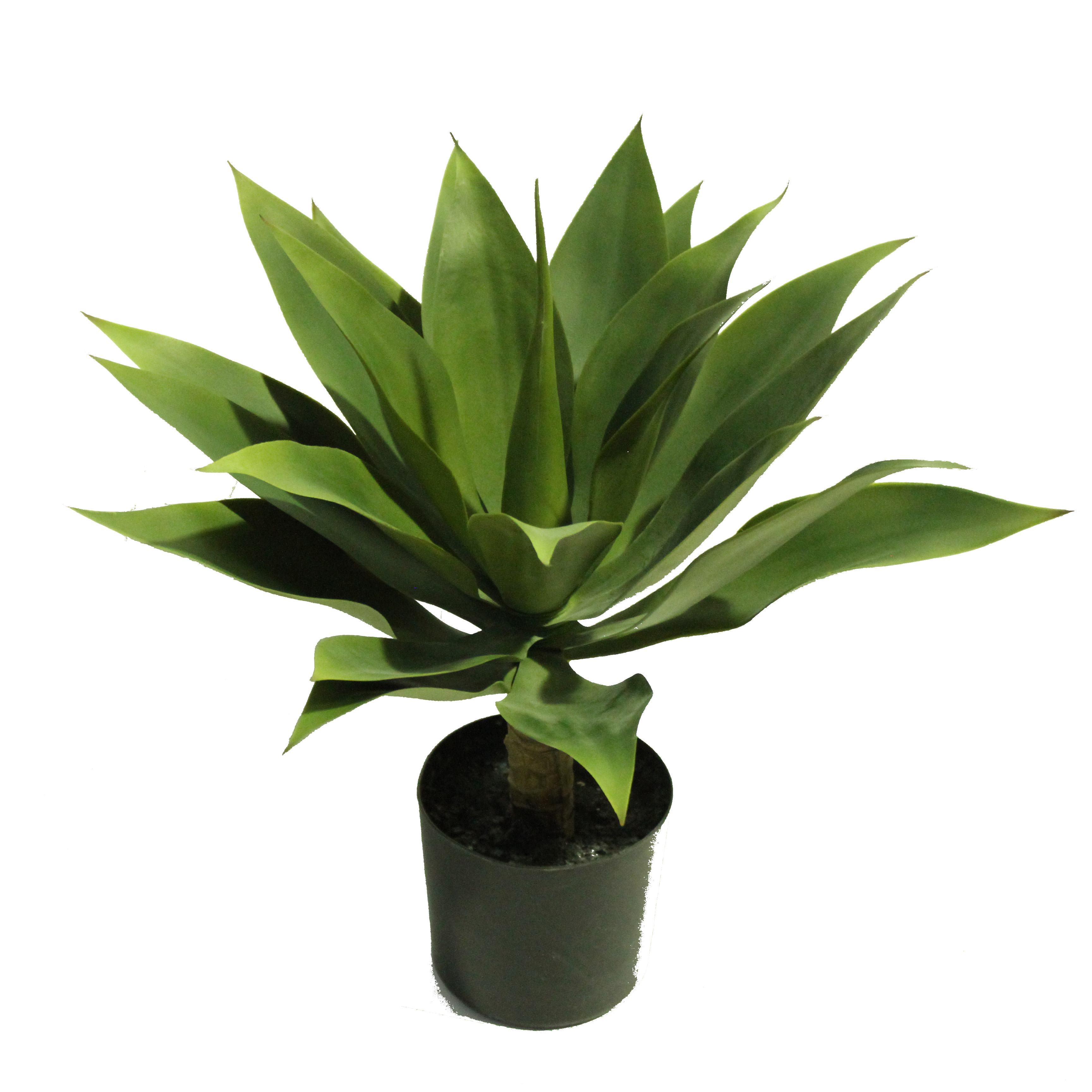 Agave plant 45cm artificial plants online for Plantes online
