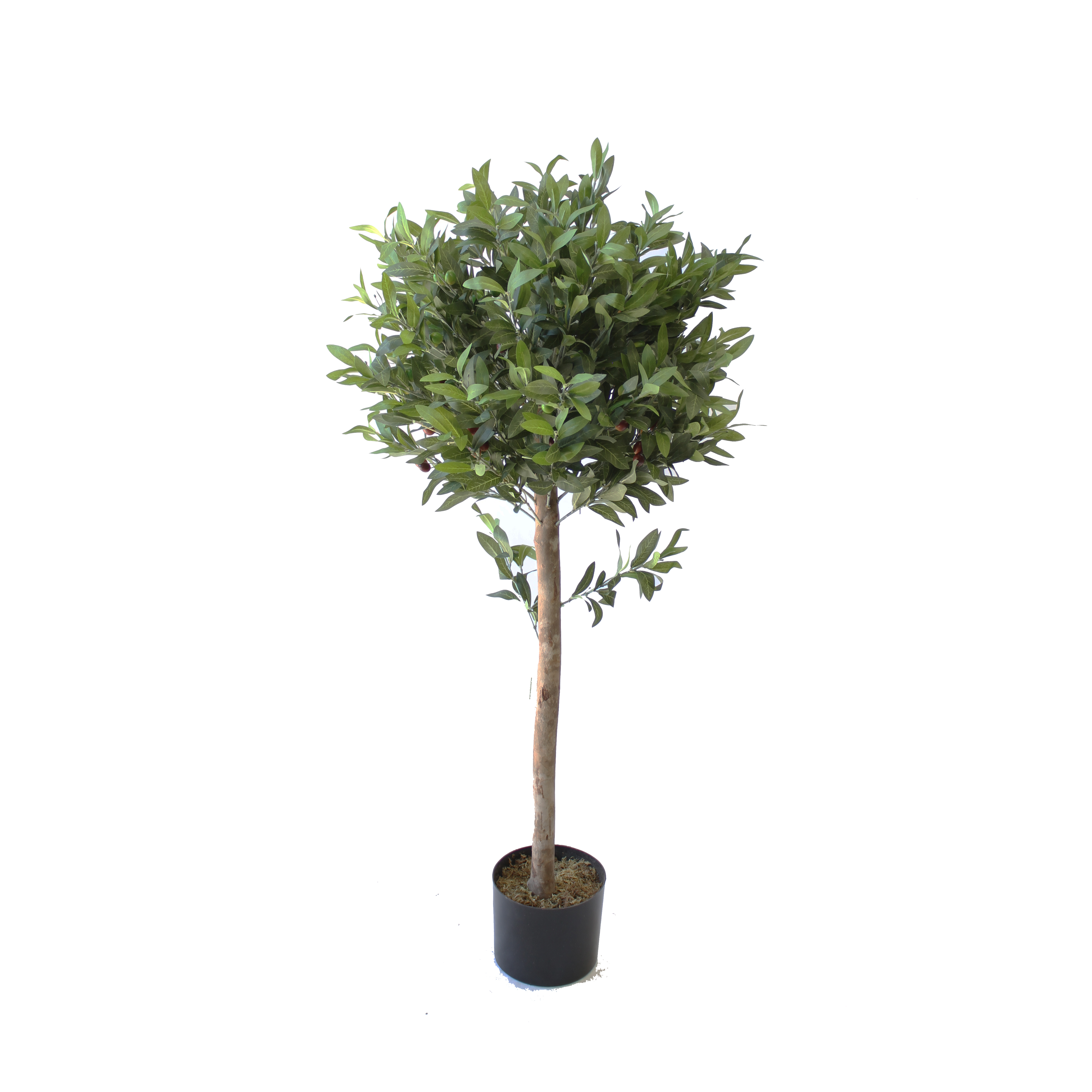 Olive Topiary Tree 1 2m Artificial Plants Online