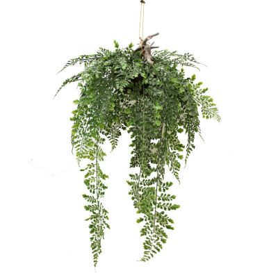 ARTIFICIAL SMALL MAIDENHAIR FERN BASKET 70CM